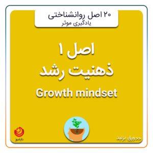 روانشناسی یادگیری ذهنیت رشد